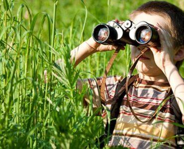 5 Razones por las que los niños deben permanecer en contacto con la Naturaleza