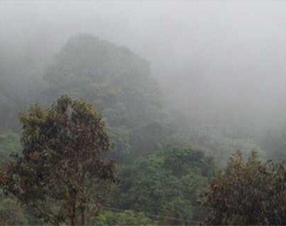 El Ecosistema en la reserva natural Refugio Corazones Verdes
