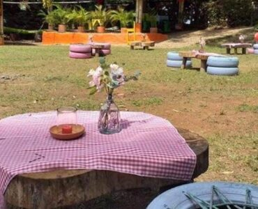 Plan Picnic Dominical
