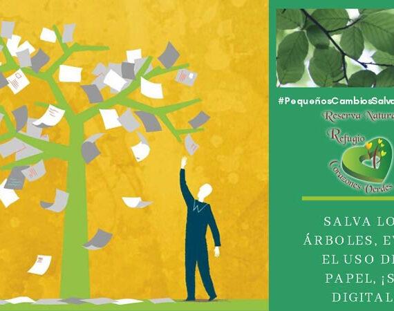 Ahorro de papel: una forma de salvar los árboles