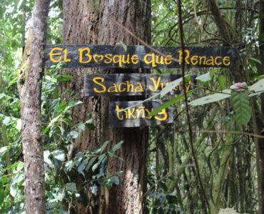 sendero-ecologico-dapa-valle-del-cauca-12