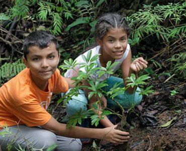 Vive la Educación Ambiental para Mejorar el Planeta